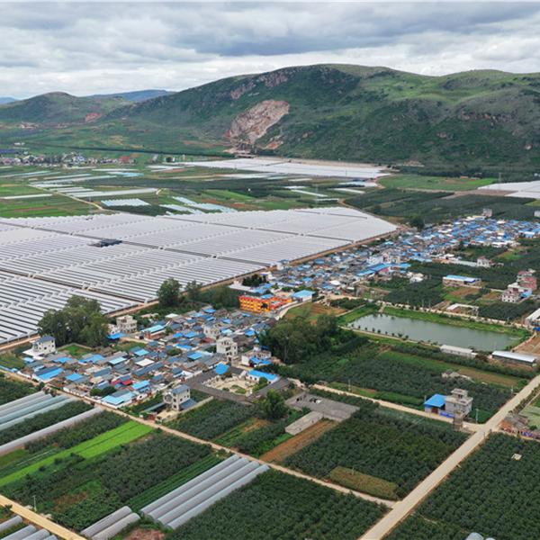 云南红河佳沃蒙自蓝莓水肥一体化项目