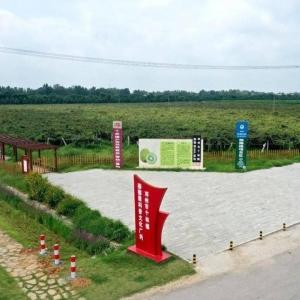 河南省邓州市十林镇猕猴桃产业水肥一体化项目