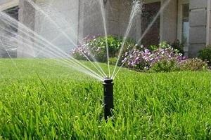 智能灌溉系统,几十亩地可以节约成本上几千元!