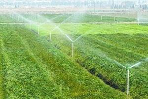 发展节水灌溉必须注重综合效益