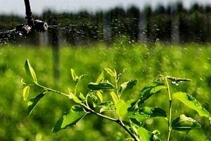 未来农业发展趋势—西安智能灌溉系统